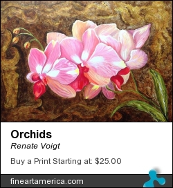 Orchids by Renate Voigt - Painting