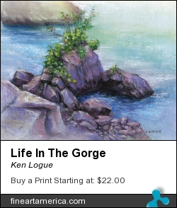 Life In The Gorge by Ken Logue - Painting - Pastel On Board