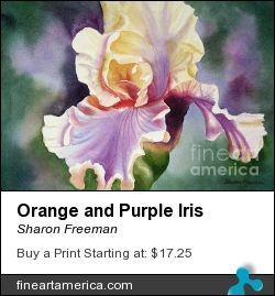 Orange And Purple Iris by Sharon Freeman - Painting - Watercolor On Paper