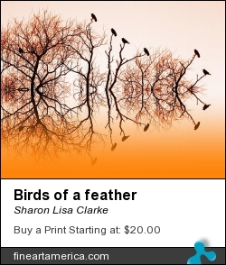 Birds Of A Feather by Sharon Lisa Clarke - Photograph - Photography
