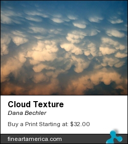 Cloud Texture by Dana Bechler - Photograph - Digital Photography