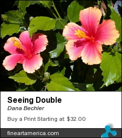 Seeing Double by Dana Bechler - Photograph - Digital Photography