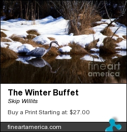 The Winter Buffet by Skip Willits - Photograph - Epson Lustre Paper