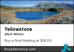 Yellowstone by Mark Weber - Photograph - Photographs