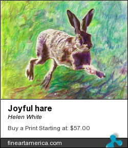 Joyful Hare by Helen White - Painting - Coloured Pencil