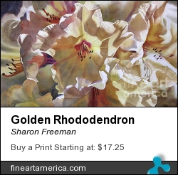Golden Rhododendron by Sharon Freeman - Painting - Watercolor On Paper
