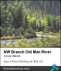 Nw Branch Old Man River by Cindy Welsh - Painting - Acrylic