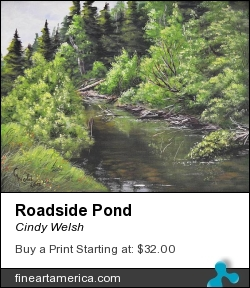 Roadside Pond by Cindy Welsh - Painting - Acrylic