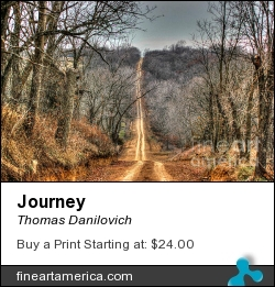 Journey by Thomas Danilovich - Photograph