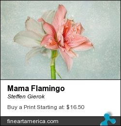 Mama Flamingo by Steffen Gierok - Pyrography - Photo