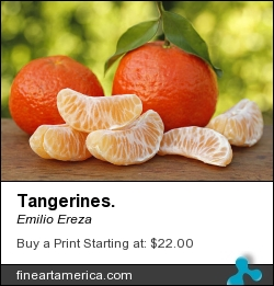 Tangerines. by Emilio Ereza - Photograph - Photographs