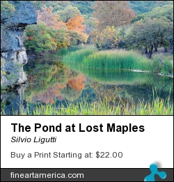 The Pond At Lost Maples by Silvio Ligutti - Photograph - Photography