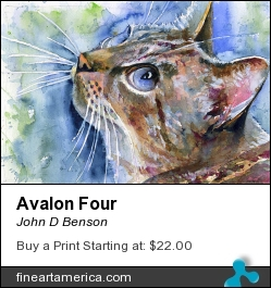 Avalon Four by John D Benson - Painting - Watercolor