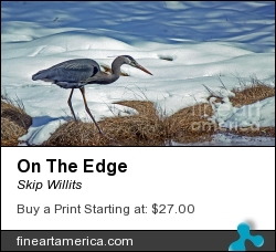 On The Edge by Skip Willits - Photograph - Epson Lustre Paper