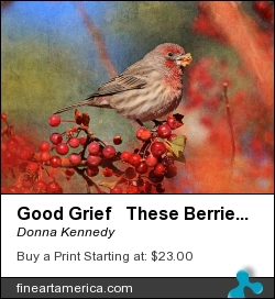 Good Grief These Berries Sure Are Messy by Donna Kennedy - Photograph - Photograph-textured