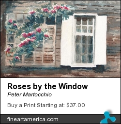 Roses By The Window by Peter Martocchio - Painting - Watercolor