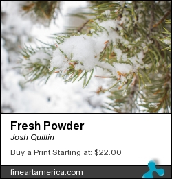 Fresh Powder by Josh Quillin - Photograph - Photograph