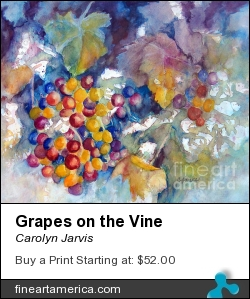 Grapes On The Vine by Carolyn Jarvis - Painting - Watercolor