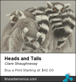 Heads And Tails by Clare Shaughnessy - Drawing - Coloured Pencil