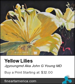 Yellow Lilies by Jgyoungmd Aka John G Young MD - Painting - Acrylic