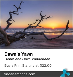 Dawn's Yawn by Debra and Dave Vanderlaan - Photograph - Photography