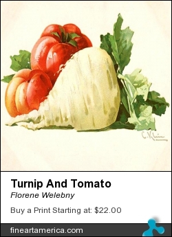 Turnip And Tomato by Florene Welebny - Painting - Painting