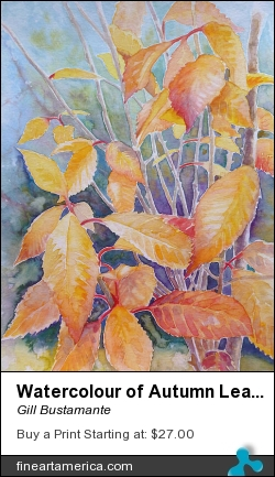 Watercolour Of Autumn Leaves by Gill Bustamante - Painting - Watercolour