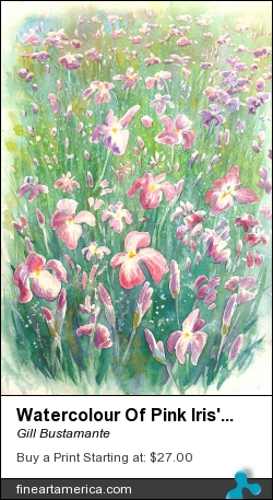 Watercolour Of Pink Iris's In A Green Field by Gill Bustamante - Painting - Watercolours