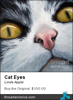 Cat Eyes by Linda Apple - Painting - Oil On Canvas