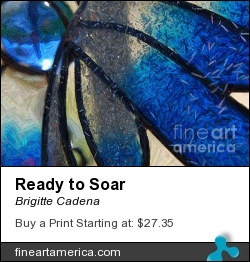 Ready To Soar by Brigitte Cadena - Photograph - Photograph