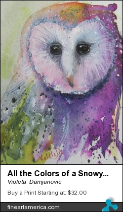 All The Colors Of A Snowy Owl by Violeta  Damjanovic - Painting - Watercolor