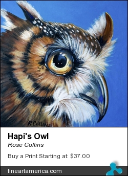 Hapi's Owl by Rose Collins - Painting - Acrylic