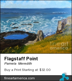 Flagstaff Point by Pamela  Meredith - Painting - Oils On Gallery Canvas