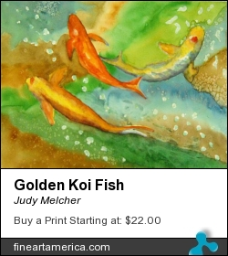 Golden Koi Fish by Judy Melcher - Painting - Watercolor On 140 Lb. Cold Press Paper